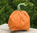 pumpkin_sm