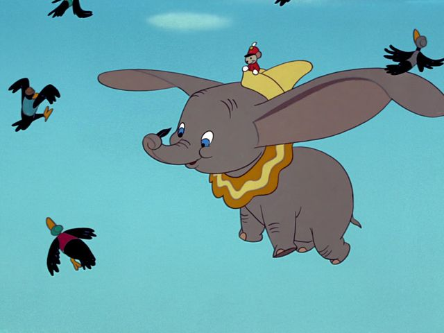 Dumbo isn't a typical elephant.